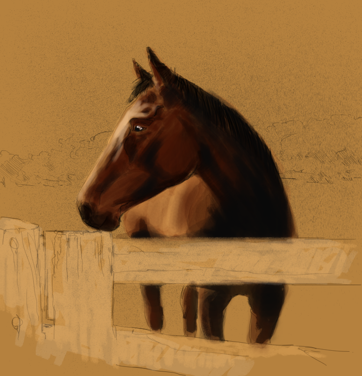 Horse unfinished